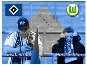 Gastbeitrag_HorstSchlau